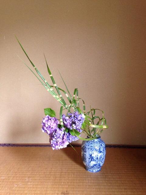 紫陽花・鷹の羽ススキ