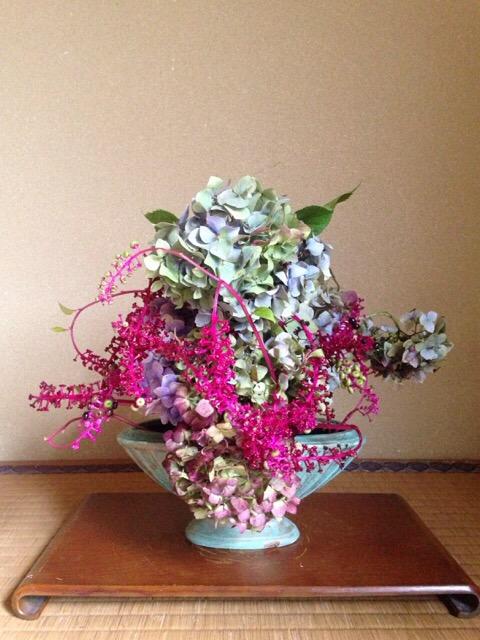 紫陽花・洋種山ゴボウ