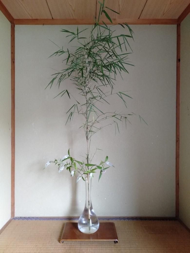 竹・オカトラノオ